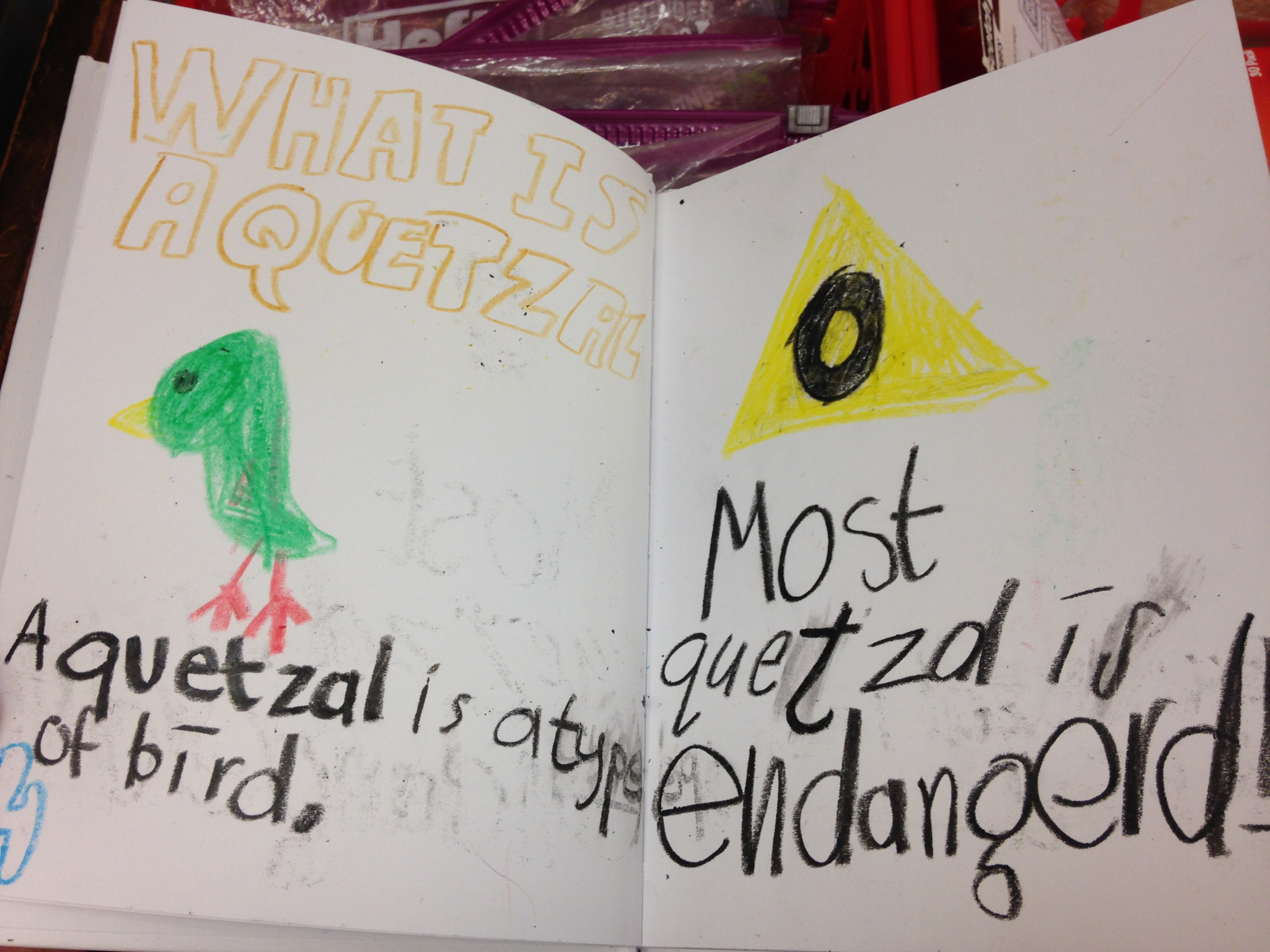 A Jumpstart Camp student-created endangered animal book