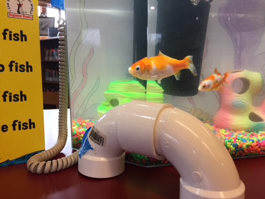 Goldfish in an aquarium next to a mock telephone constructed of PVC pipe.