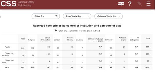 Figure 5. Custom report showing hate crimes