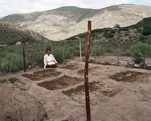 David Goldblatt, Anna Boois, a goat farmer, one of 14 women given land by the government, with her birthday cake and vegetable garden on her farm Klein Karoo, Kamiesberge, Northern Cape (2003).