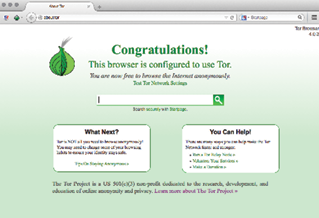 Figure 4. The Tor Browser when opened. Notice the Startpage search engine (in the center of the screen and on the top right as a search bar), as well as the NoScript extension (top left) and Tor Button (top left). The HTTPS Everywhere extension is not displayed, but it's installed.